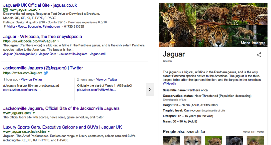 jaguar-search-term