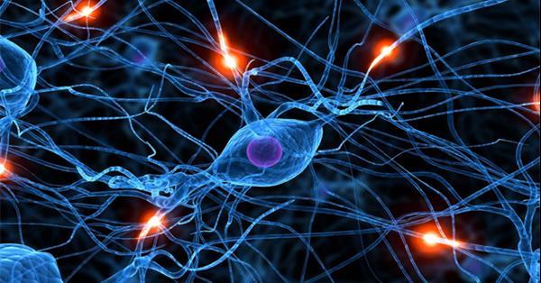 Исследование ROOKEE: Эффективность нейросетей для автоматизации ссылочного продвижения