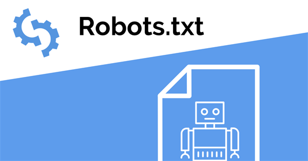 Mixed directive: how Google handles the robots.txt file