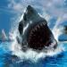 Sharkw810